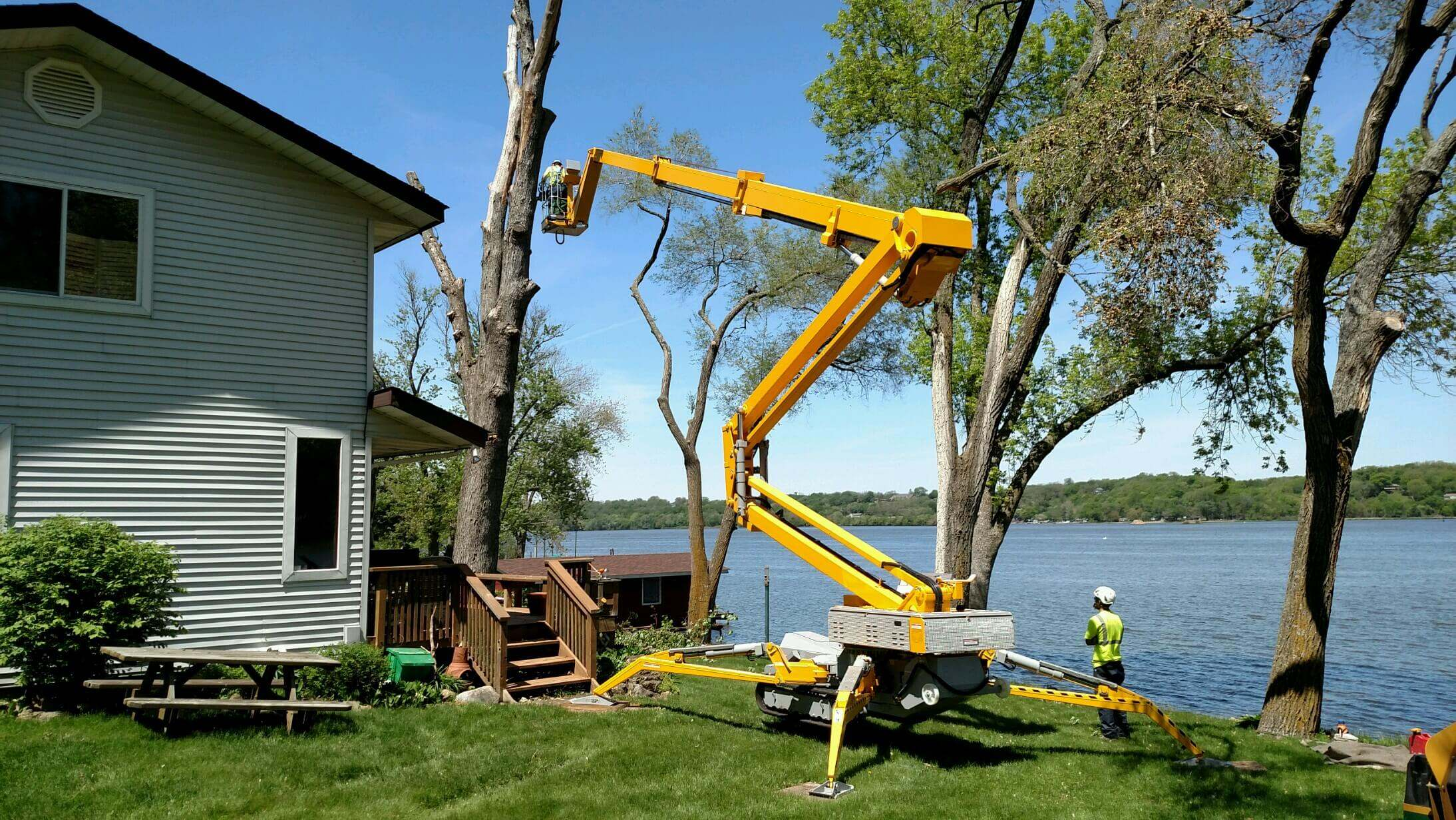 Tree Removal Services Near Me stump Removal Cost Tree ...