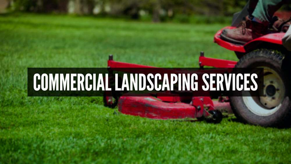 commerical landscaping service