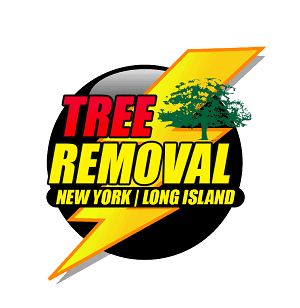 Tree Removal Service Long Island NY