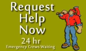 emergencytreeserviceremoval24hours