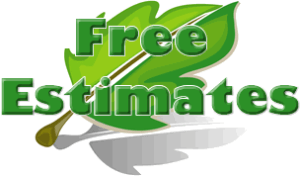 Tree cutting service Free estimate
