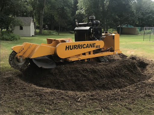 Stump removal and Emergency Tree removal